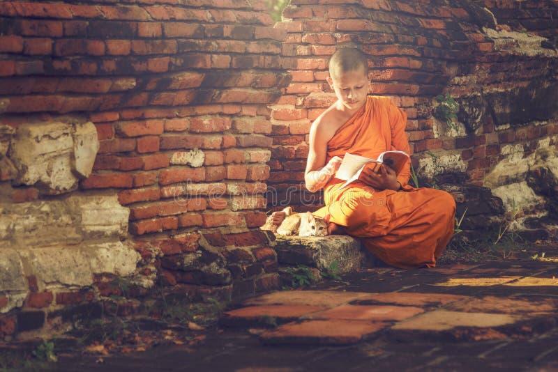 年轻佛教新手修士 库存照片