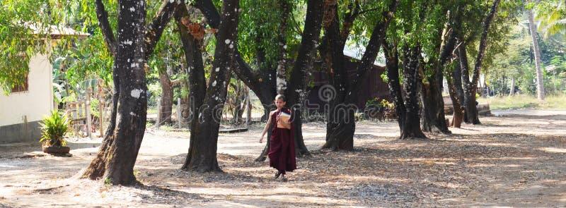 佛教新手走去Tai Ta Ya修道院或圣地Roi吨寺庙 库存照片