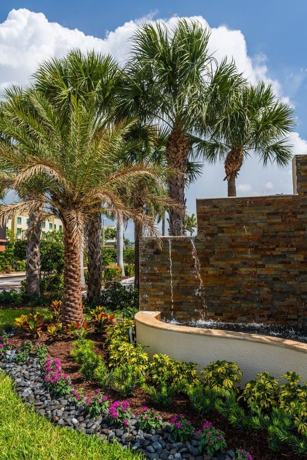 佛罗里达庭院 库存照片