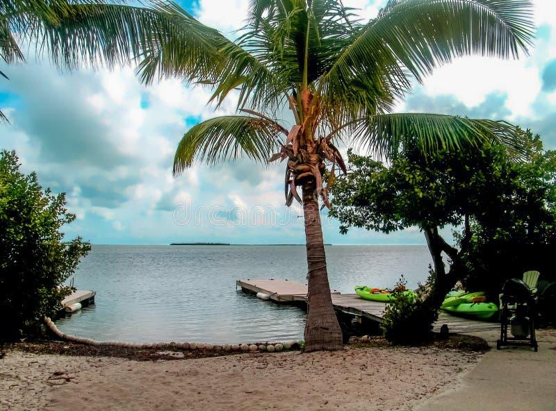 佛罗里达群岛微小的海滩为装边用与船坞和皮船和棕榈树的椰子 免版税库存照片