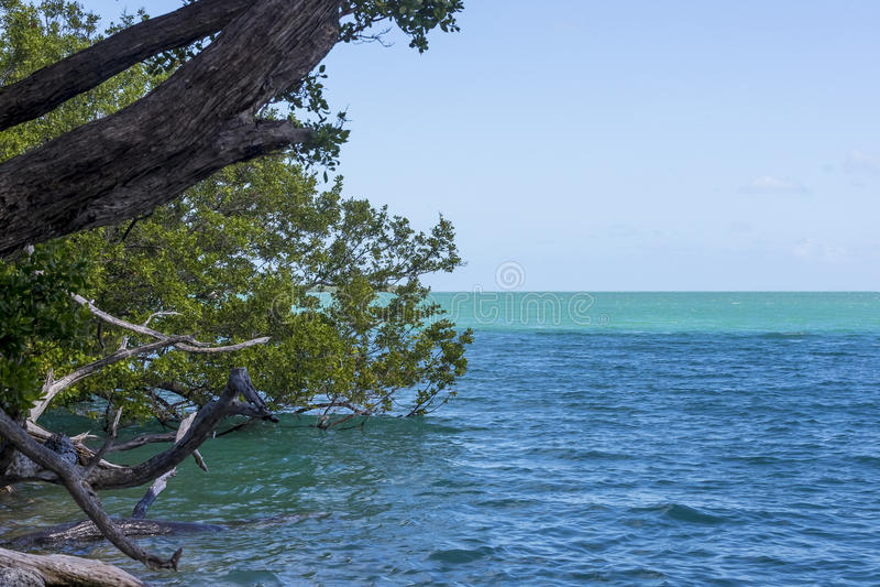 佛罗里达群岛的风景看法 库存图片