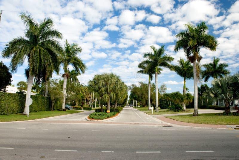 佛罗里达豪华豪宅公园 库存照片