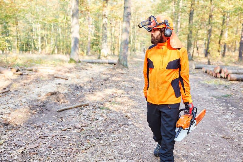 作为一名伐木工人的森林工作者有锯的 免版税库存图片