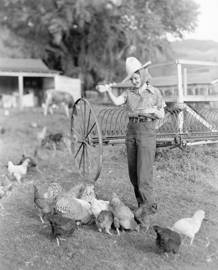 作为农夫打扮的少妇带来食物给鸡(所有人被描述不更长生存,并且庄园不存在 Su 免版税库存照片