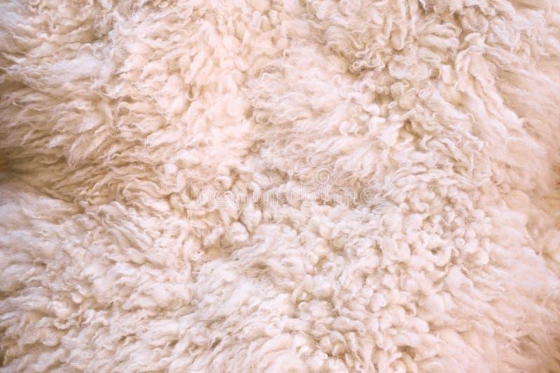 作为抽象背景的白色毛皮 库存图片