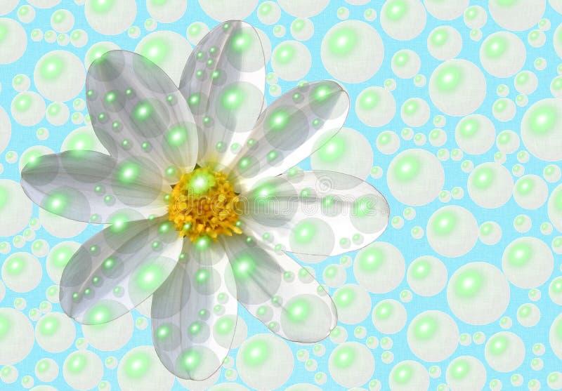 作为新鲜的雏菊 向量例证