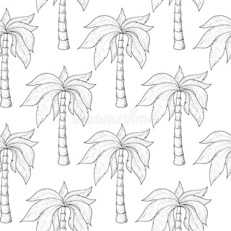 作为无缝的样式的棕榈树 手拉的草图图片