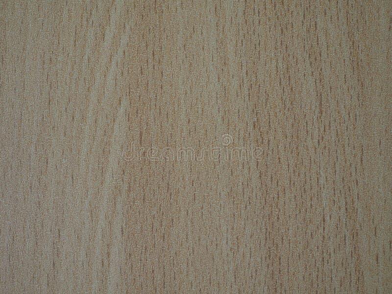 作为木头的米黄抽象背景 免版税库存照片
