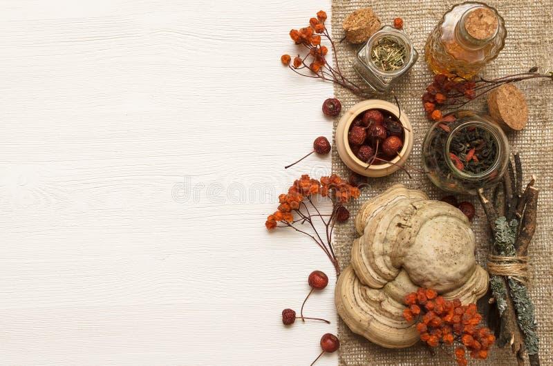 作为消沉有效草本金丝桃属植物医学perforatum对待 食谱 替代医学概念 干莓果有机自然ingridients 库存图片