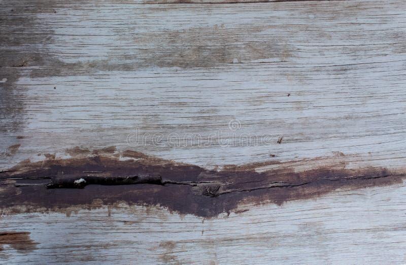 作为背景使用的实体木材样式 库存照片