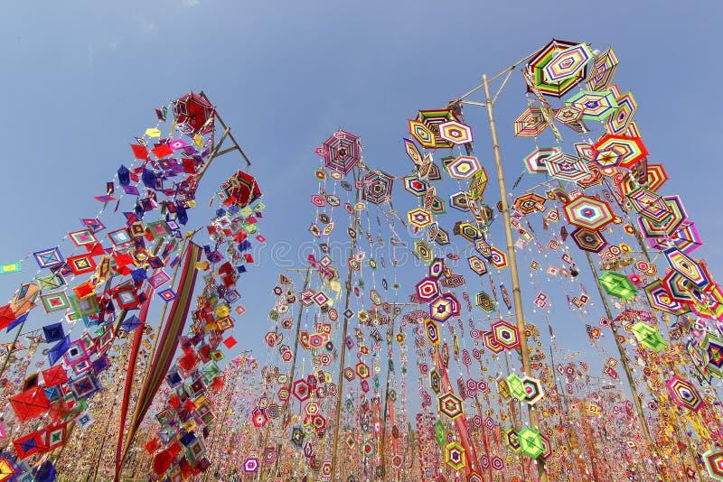 作为背景的五颜六色的桐树旗子,Isan加拉信泰国桐树旗子  库存图片