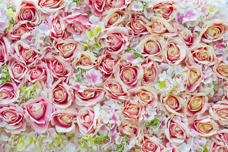 作为背景的许多桃红色玫瑰 库存图片
