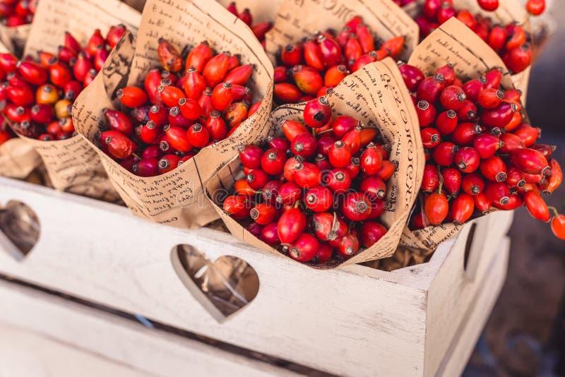 作为花束,秋天装饰的欧亚山茱萸 免版税库存照片