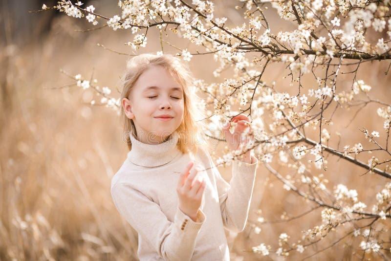 作有闭合的眼睛的白肤金发的女孩在佐仓附近白花的开花庭院里  春天樱桃树和温暖晴朗 库存照片
