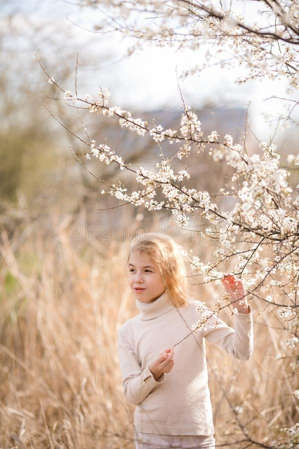 作白色衣裳的白肤金发的女孩在佐仓附近白花的开花庭院里  春天樱桃树和温暖 免版税图库摄影