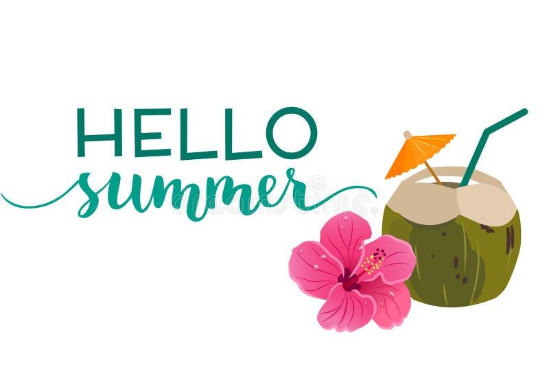 你好与绿色椰子饮料和明亮的桃红色hibis的夏天文本 库存例证