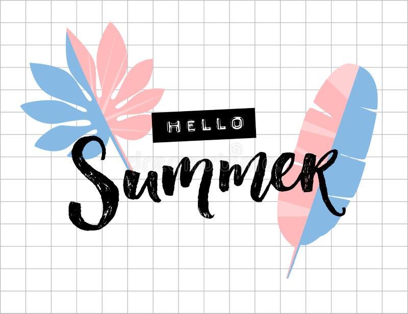 你好在方格纸背景的夏天文本 棕榈和香蕉叶子 刷子字法和压印的磁带词 向量例证