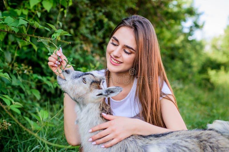 你好宠物 妇女狩医哺养的山羊 农场和农厂概念 动物是我们的朋友 愉快的女孩爱山羊 ?? 库存图片