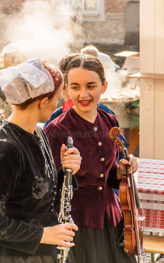 佩带传统成套装备和乐器的女孩 库存照片