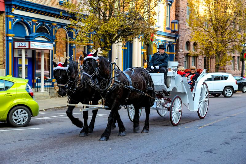 佩带圣诞老人帽子和鹿角的马 免版税库存照片