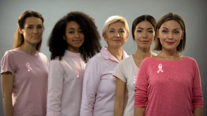 佩带桃红色衣裳和丝带的小组妇女,作战与乳腺癌 库存图片