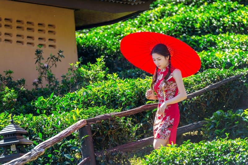 佩带繁体中文的亚裔妇女穿戴和在绿茶领域的红色伞 图库摄影