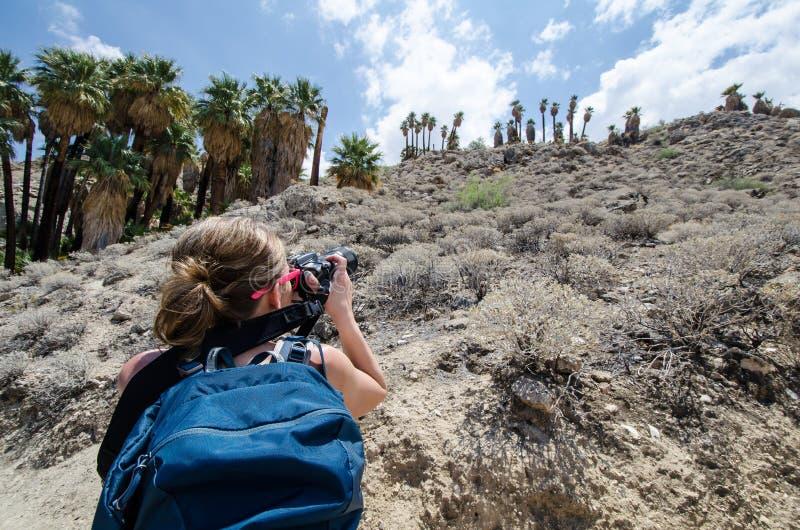 佩带背包的女性摄影师为在峡谷的棕榈树照相 库存图片