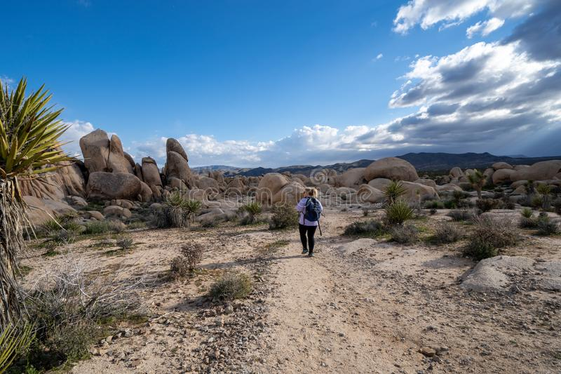 佩带背包的年轻女人女性徒步旅行者在一条供徒步旅行的小道开始在约书亚树国家公园,对曲拱岩石 免版税库存照片