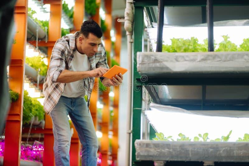 佩带被摆正的衬衣工作的深色头发的农业学家自温室 库存照片