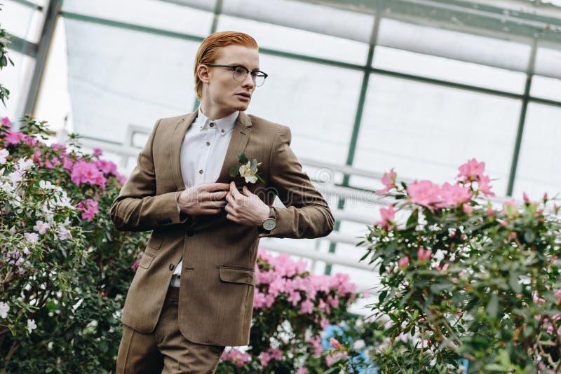 佩带钮扣眼上插的花和看在植物的镜片的英俊的时髦的年轻红头发人新郎 库存图片