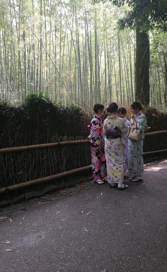 佩带kimoni竹子森林的妇女 免版税图库摄影
