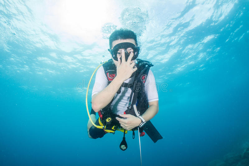 佩戴水肺的潜水 库存照片