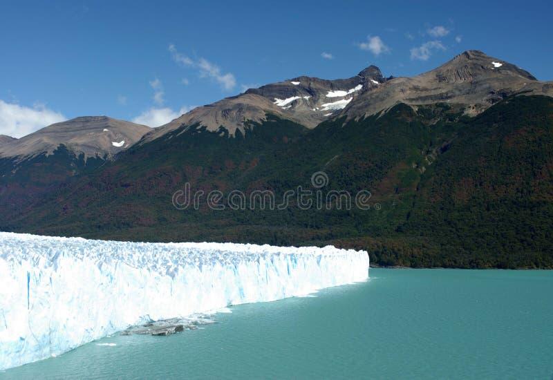佩里托莫雷诺冰川,阿根廷 免版税库存图片