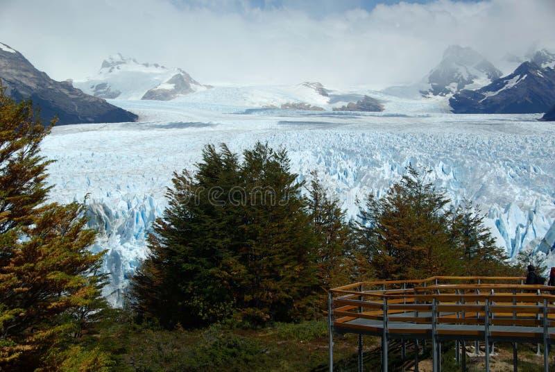 佩里托莫雷诺冰川,阿根廷 免版税库存照片