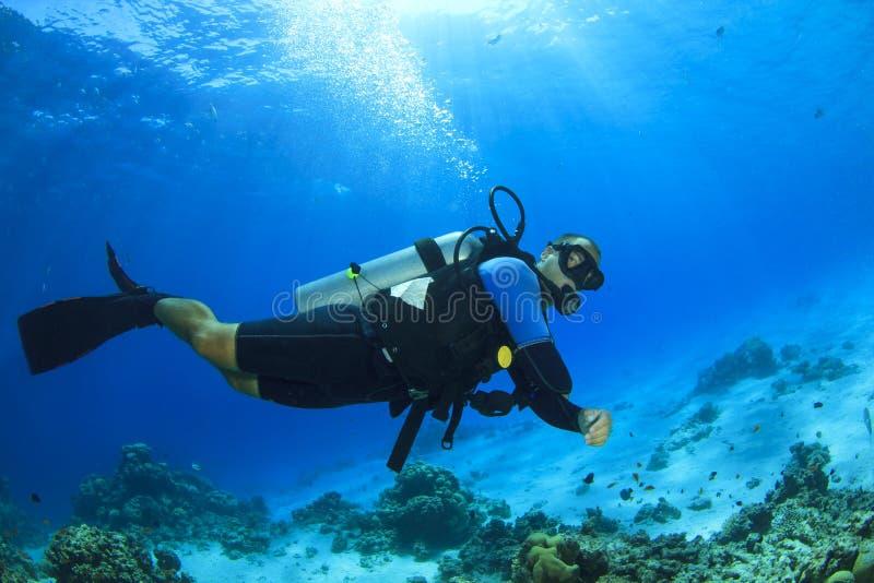 佩戴水肺的潜水 免版税库存图片