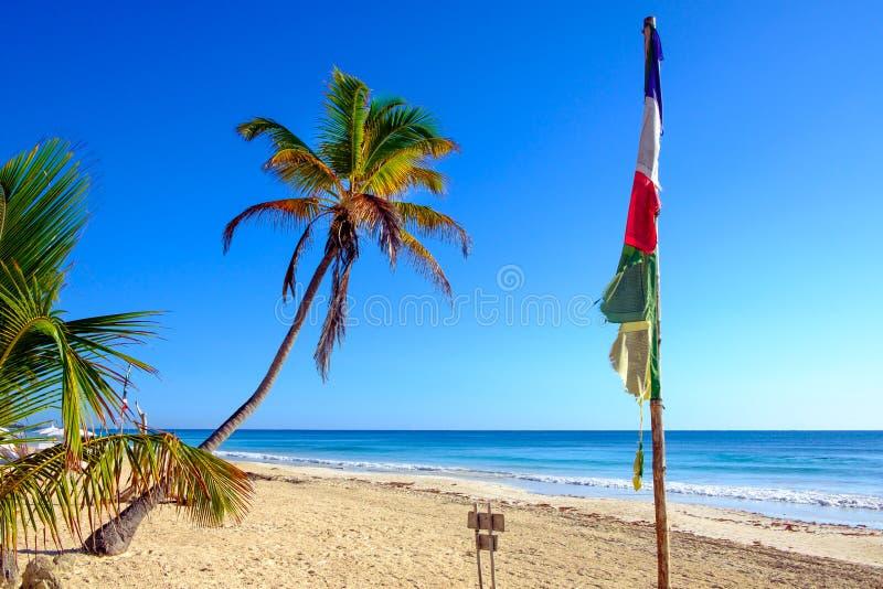 使与棕榈树和佛教祷告旗子的风景靠岸 库存图片