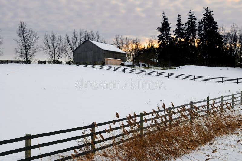 使农村冬天环境美化 库存照片