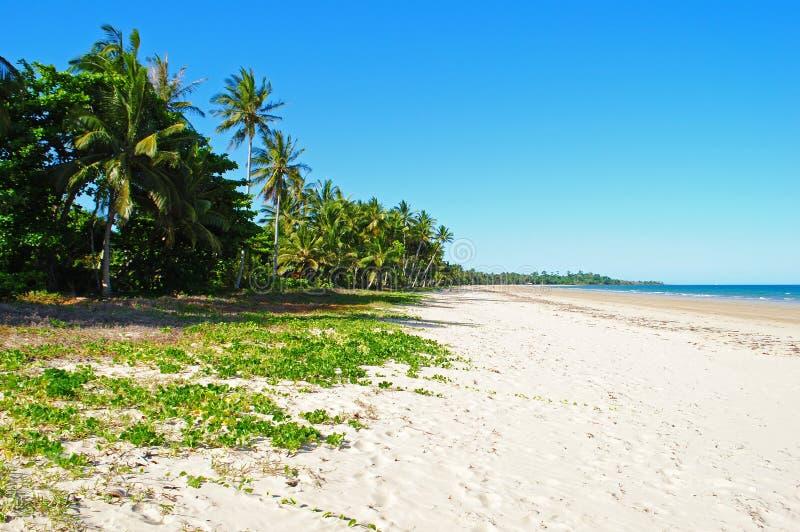 使命海滩昆士兰澳大利亚 库存照片