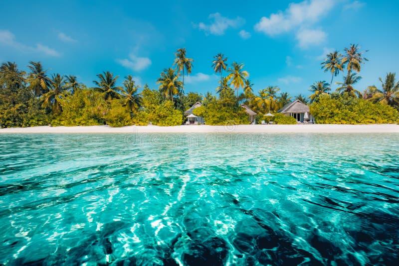 使在掌上型计算机沙子场面夏天树型视图白色的美好的梦想本质靠岸 在白色沙滩和令人惊讶的海的美丽的棕榈树 暑假和假日概念 免版税库存照片