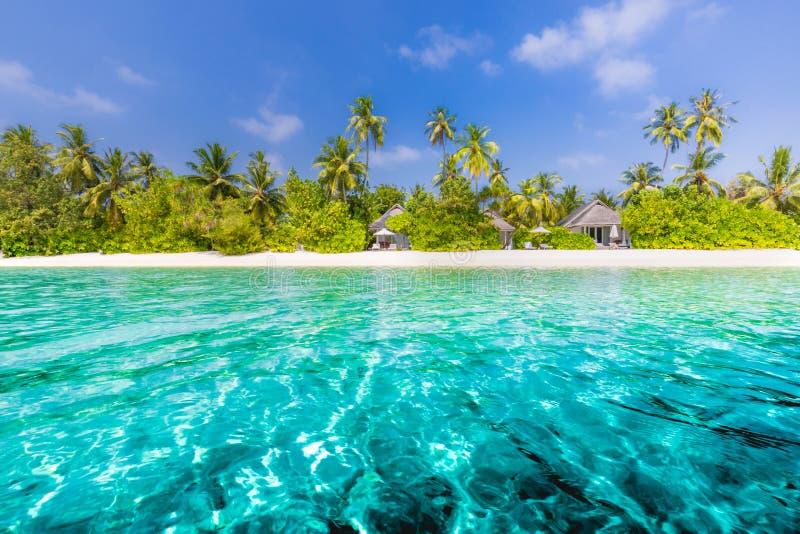 使在掌上型计算机沙子场面夏天树型视图白色的美好的梦想本质靠岸 在白色沙滩和令人惊讶的海的美丽的棕榈树 暑假和假日概念 免版税库存图片