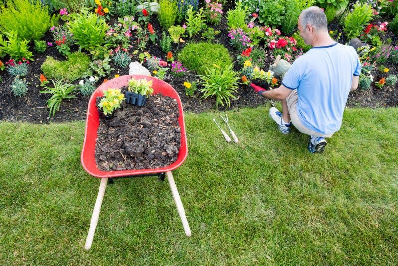 使庭院环境美化的花匠 免版税库存图片