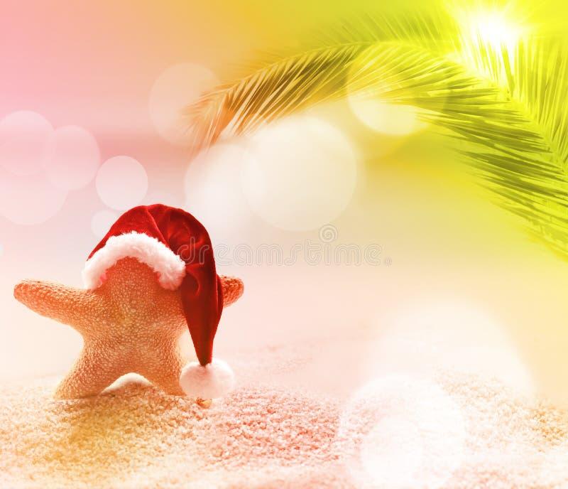 使海岸塞浦路斯地中海沙子石头夏天海浪靠岸 海星在圣诞老人帽子 免版税库存照片