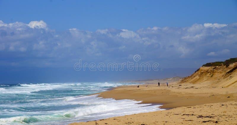 使海洋靠岸 图库摄影