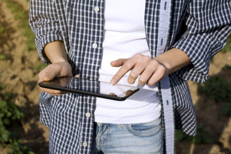 使用一种数字片剂的农艺师在农业领域 免版税库存照片