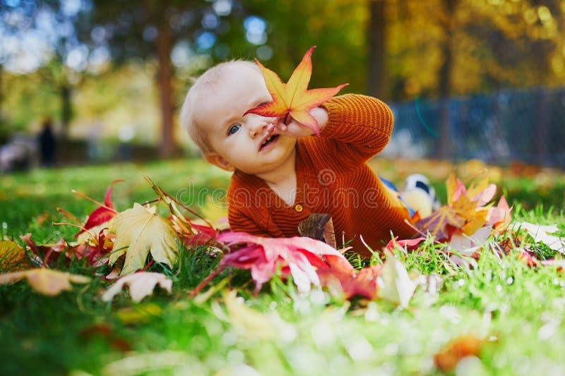 使用与五颜六色的秋叶的女婴户外 库存图片