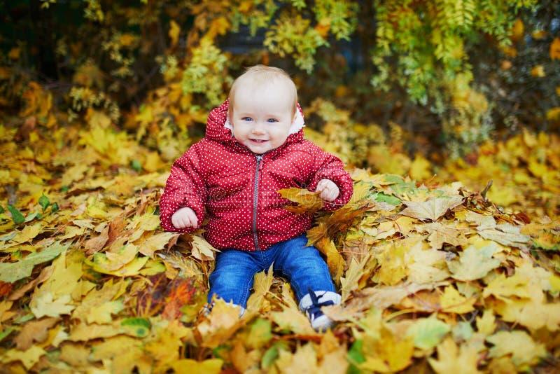 使用与五颜六色的秋叶的女婴户外 图库摄影