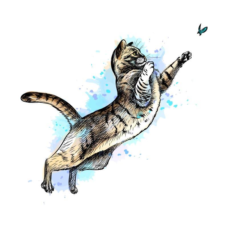 使用与从水彩飞溅的一只蝴蝶的猫  向量例证