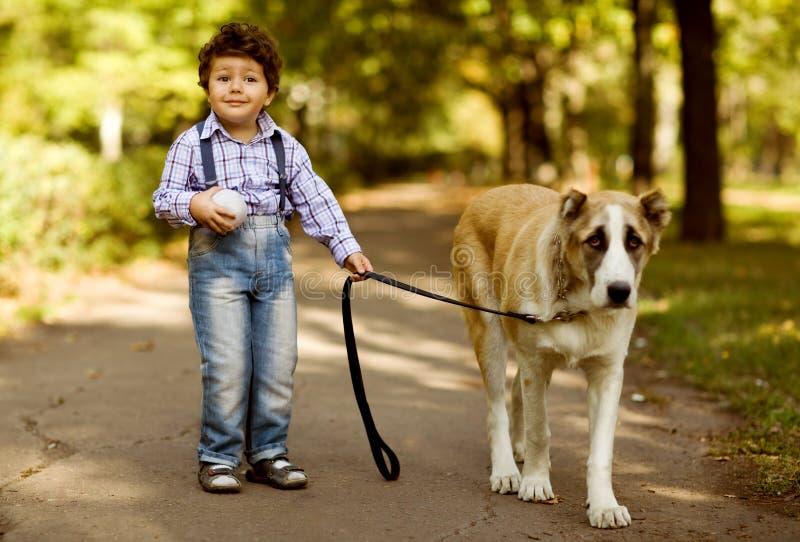 使用与他的狗的小逗人喜爱的男孩 免版税图库摄影