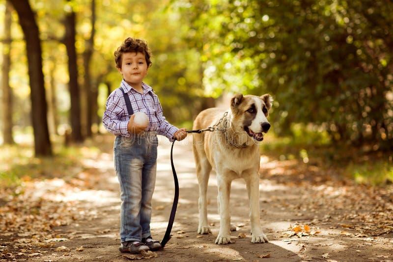 使用与他的狗的小逗人喜爱的男孩 免版税库存图片