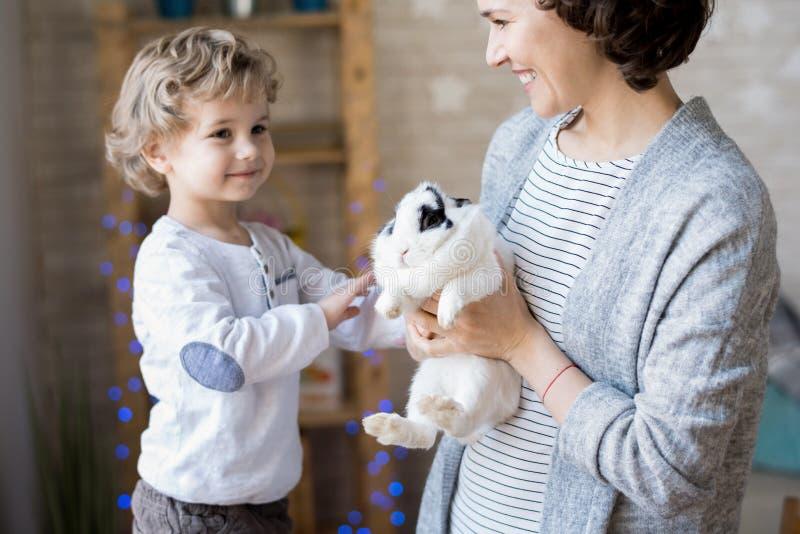 使用与兔宝宝的可爱的白肤金发的男孩 免版税图库摄影
